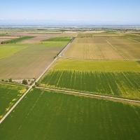La Belgique perd 43 fermes par semaine et cela depuis 30 ans #agriculture #economie