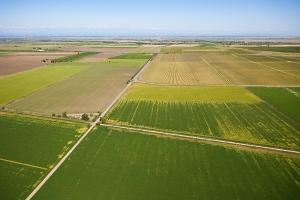 ferme agricole