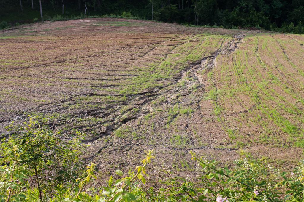 Global erosivity map shows differences between climatic for Soil erosion causes