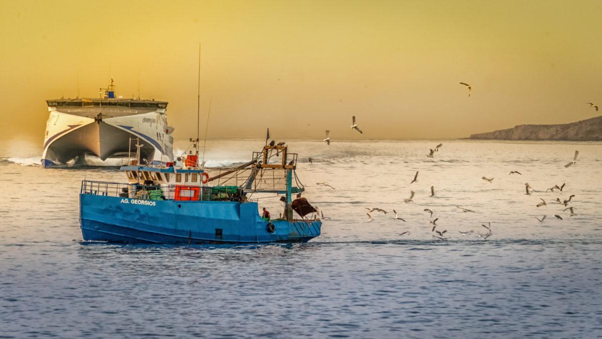 Ban on electric pulse fishing